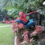 Cairns Student Lodge - Spiderman