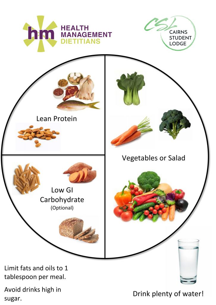 Nutrition Plate Model Health Management Dietitians